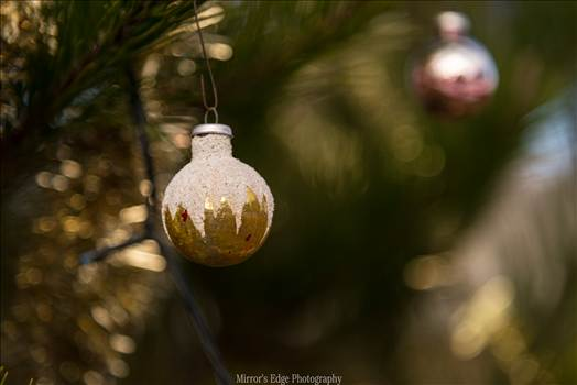 Gold Christmas Ornament.jpg by Sarah Williams