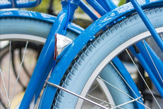 Rainy Blue Bike.jpg by Sarah Williams