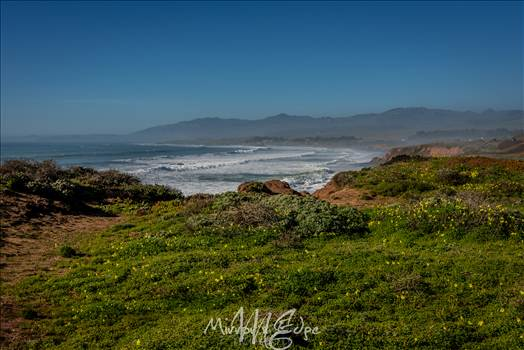 Rugged Cambria Coast 02132016.jpg by Sarah Williams