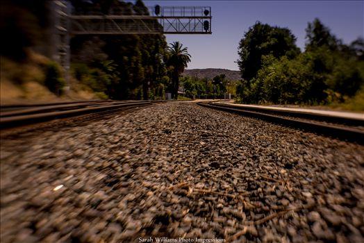 Between the Tracks.jpg -