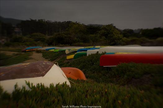 Colorful Kayaks.jpg by Sarah Williams
