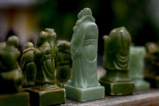 Chess King into Focus.jpg by Sarah Williams