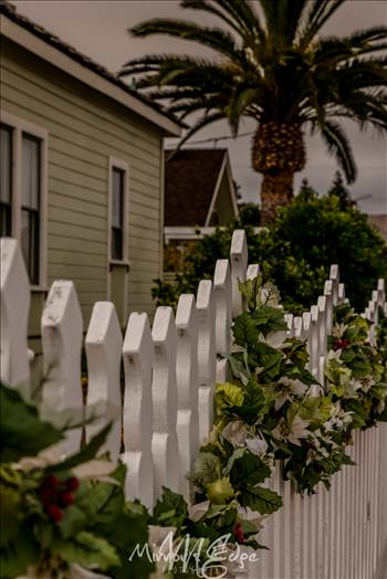 Holiday Picket Fence.jpg by Sarah Williams
