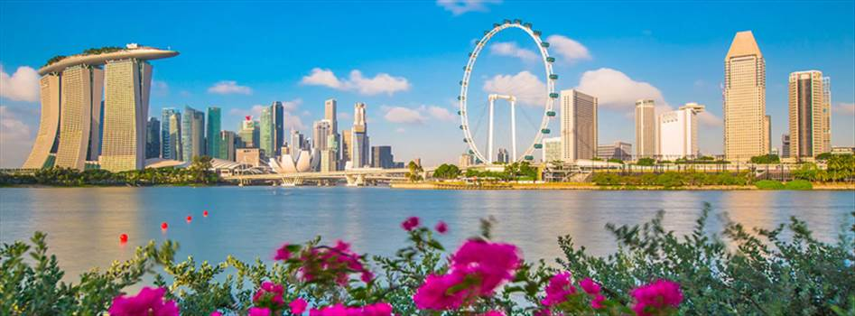 Air Ticket to Singapore Booking by Findmyfare.com.jpg by Findmyfare