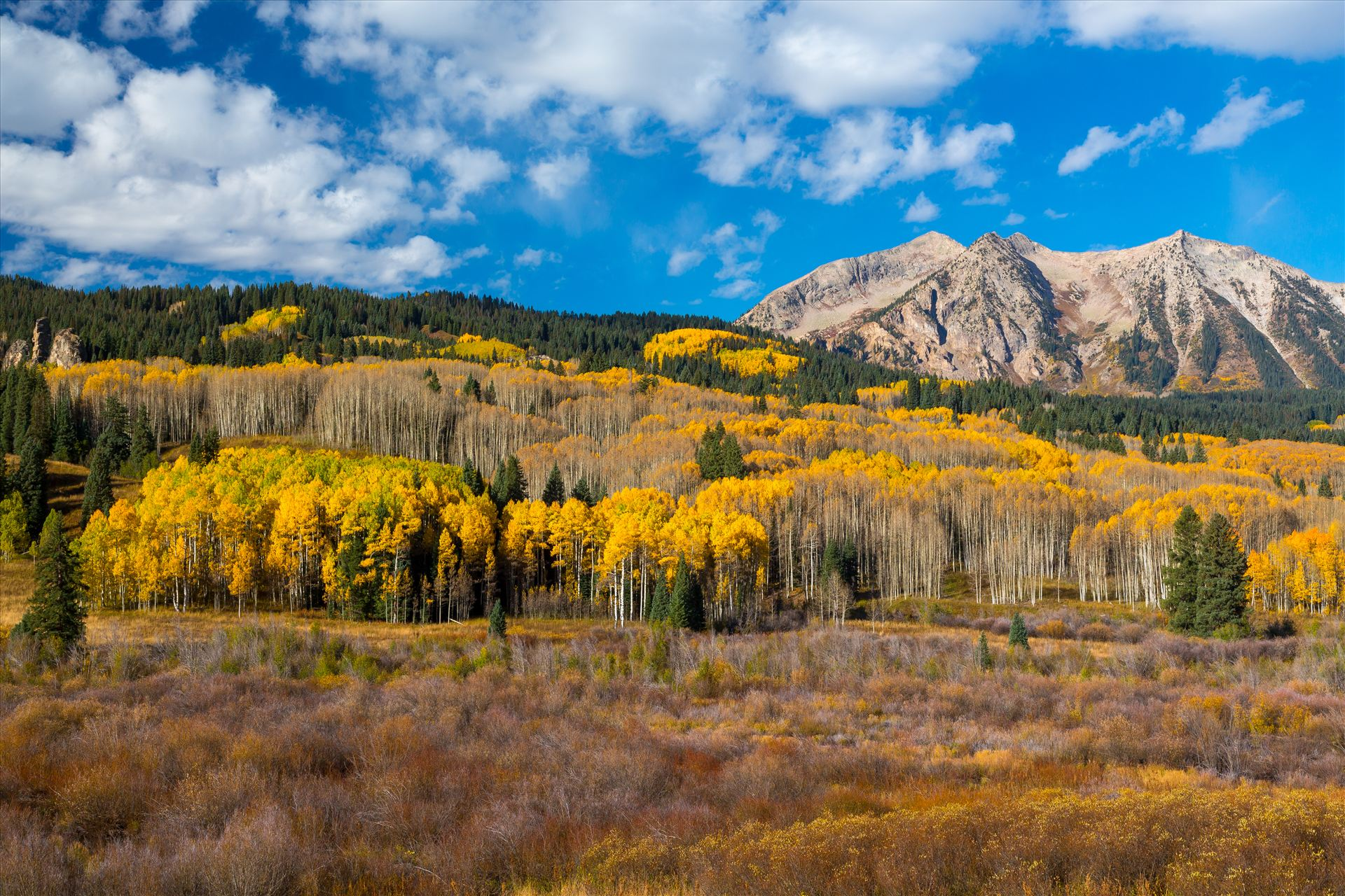 East Beckwith Mountain East Beckwith mountain surrounded by fall colors. Taken a few steps off Kebler Pass, Crested Butte, Colorado. by Scott Smith Photos