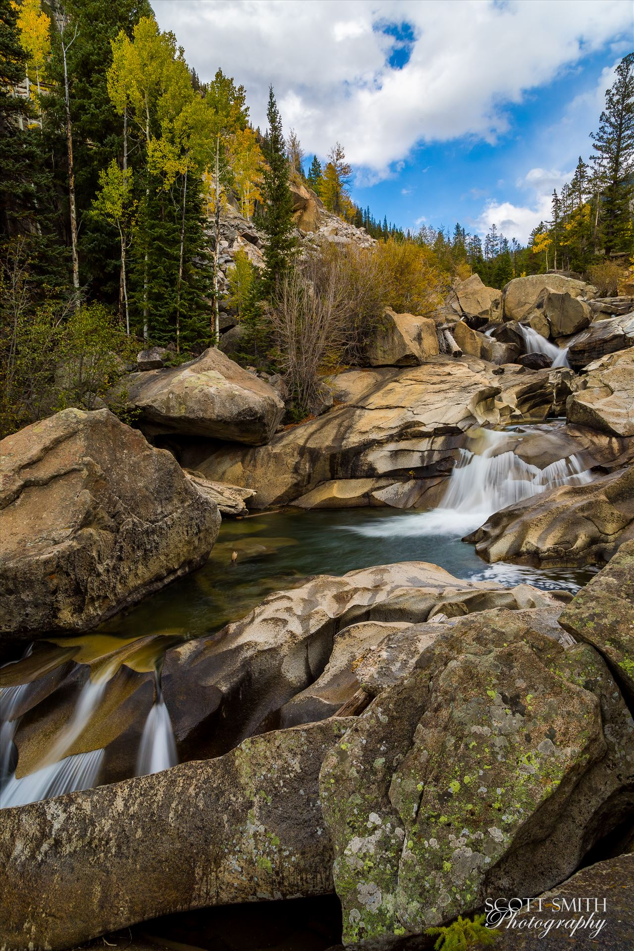 Aspen Grottos II  by Scott Smith Photos