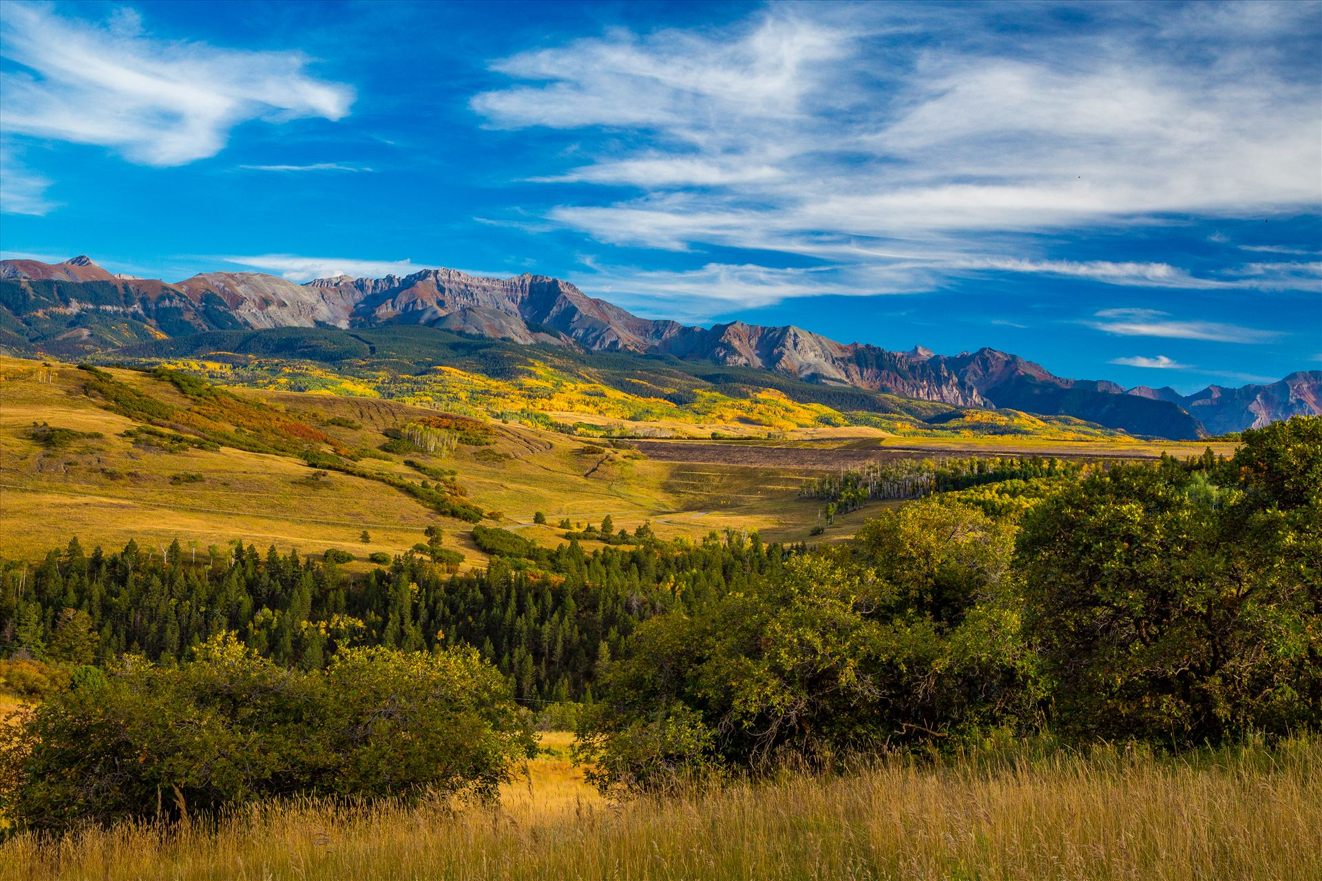 Last Dollar Road 2 From Last Dollar Road looking towards the San Joquin Range, the area around Telluride explodes with fall colors. by Scott Smith Photos