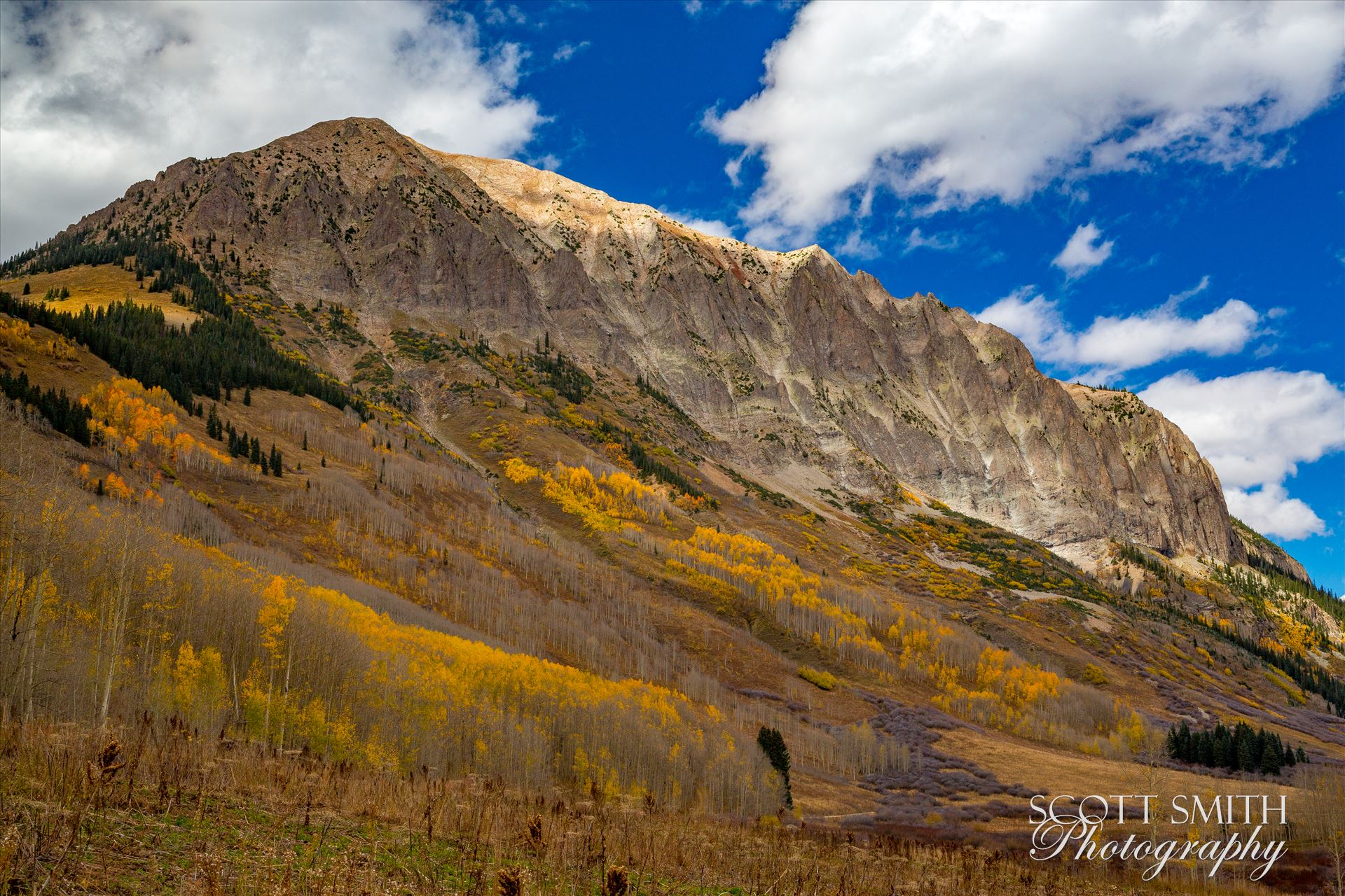 Gothic Mountain Fall colors on Gothic mountain, near Crested Butte Colorado. by Scott Smith Photos