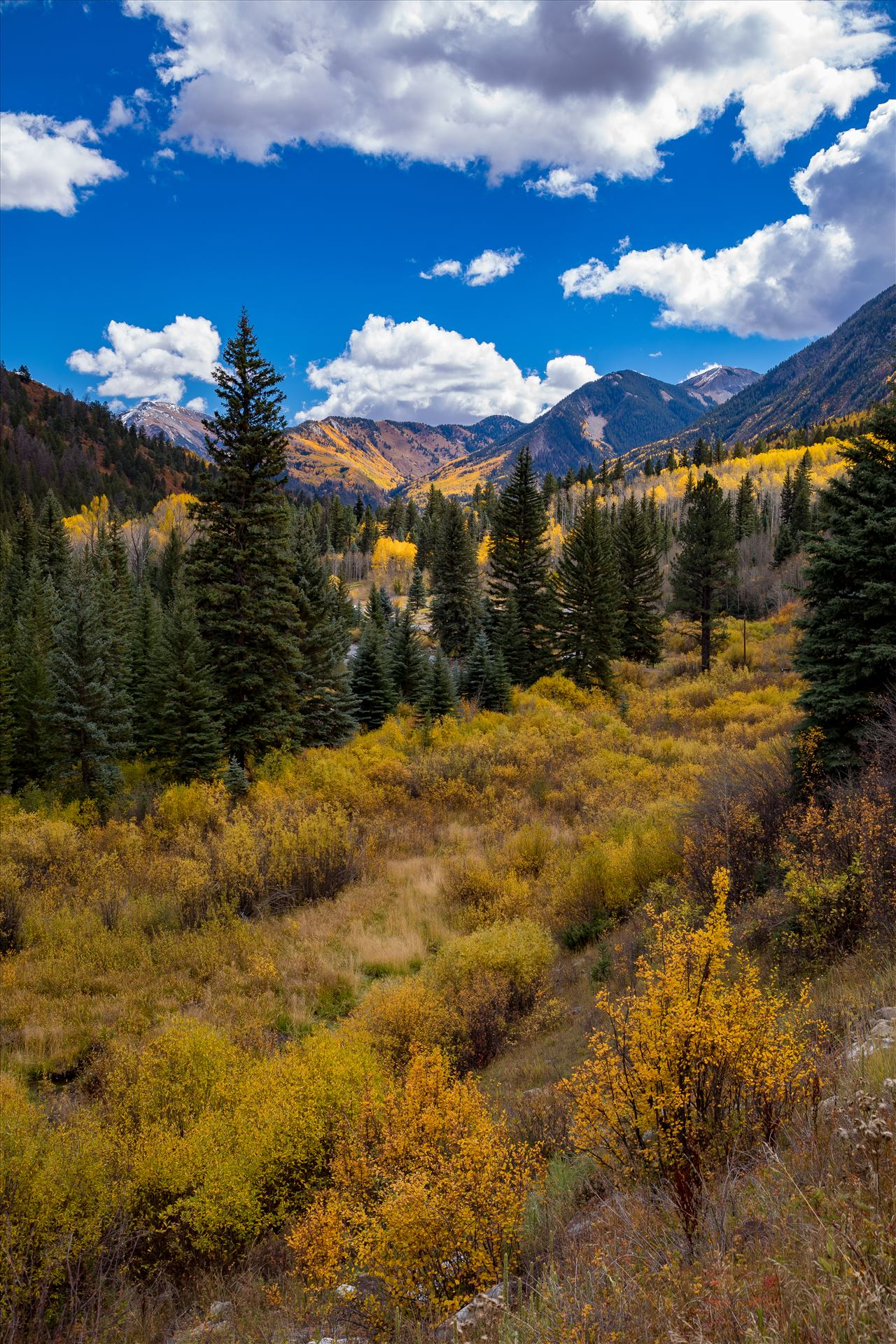 Road Number 3 Outside of Marble, Colorado, the view from Road Number 3 in fall. by Scott Smith Photos