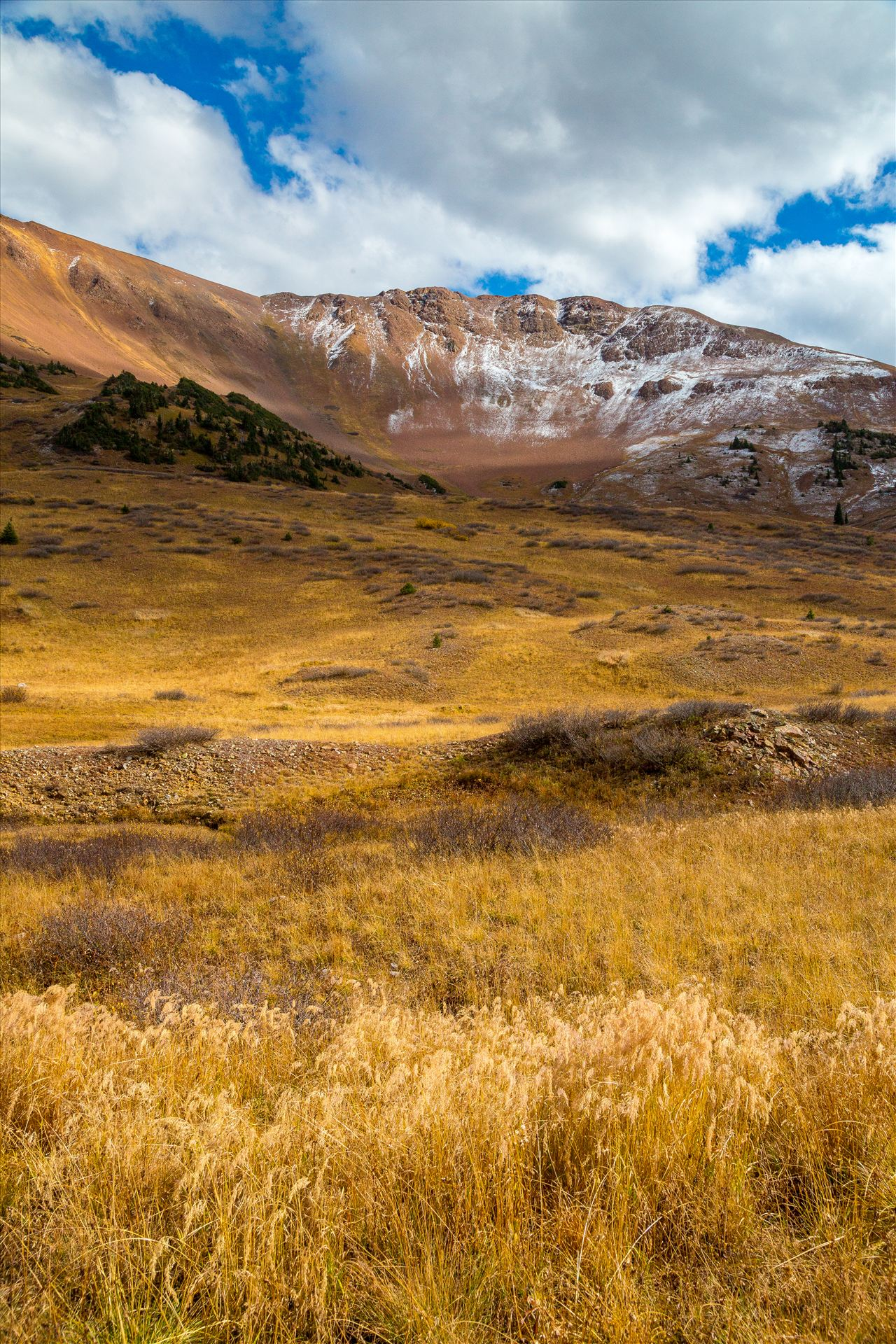 Snow and Grasses at Mount Baldy Wilderness Snow and fall grasses on the peaks at the Mount Baldy Wilderness area, near the summit. Taken from Schofield Pass in Crested Butte, Colorado. by Scott Smith Photos