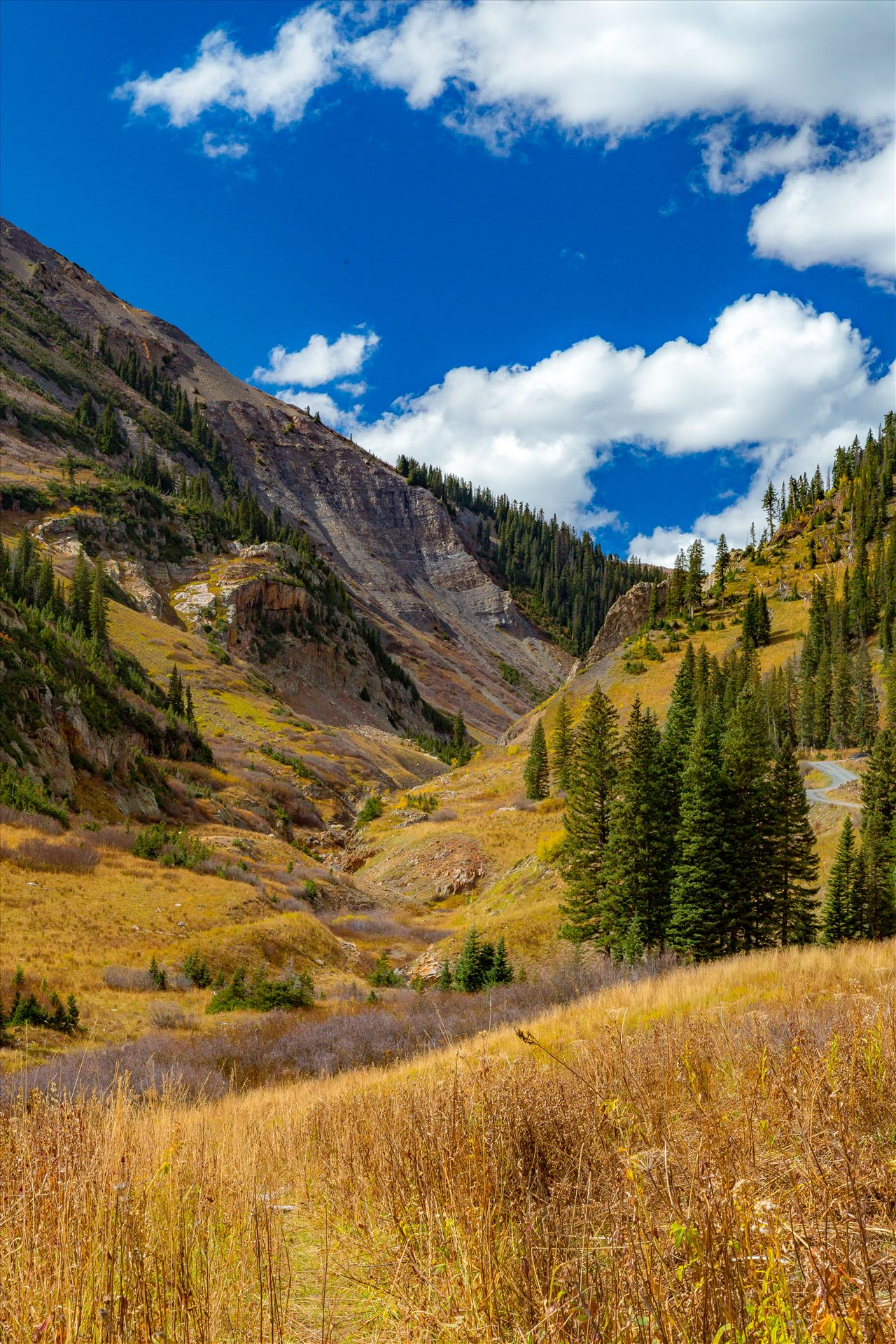 Gothic Road The valley just before Emerald Lake near Crested Butte, Colorado. by Scott Smith Photos