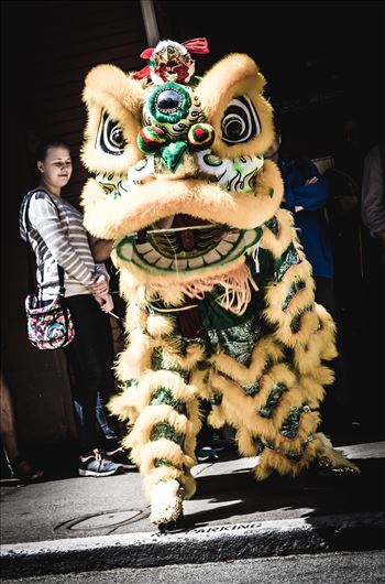 Chinatown Dragons by Scott Smith Photos
