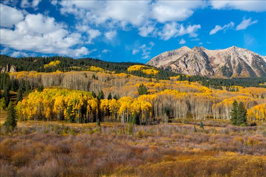 East Beckwith Mountain - East Beckwith mountain surrounded by fall colors. Taken a few steps off Kebler Pass, Crested Butte, Colorado.