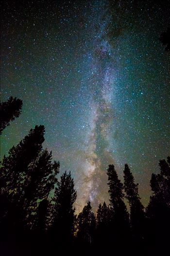 Leadville Starry Sky by Scott Smith Photos