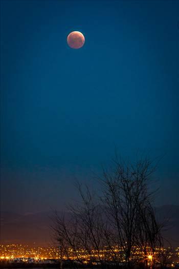 Blood Moon over Denver, Colorado by Scott Smith Photos