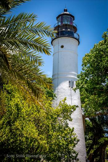 Various lighthouses from trips to North Carolina, Florida, and Virginia.