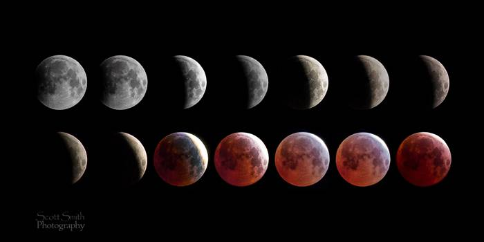 April 4 2015 Eclipse Collage by Scott Smith Photos