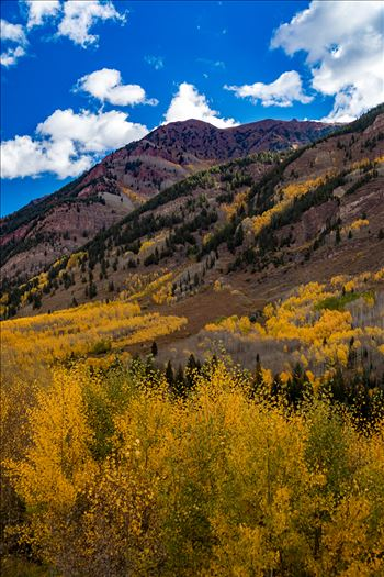 Fall in Aspen Snowmass Wilderness Area No 3 -