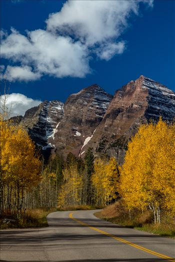 Fall in Aspen Snowmass Wilderness Area No 4 by Scott Smith Photos