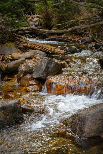 Near Alberta Falls, Rocky Mountain National Park by Scott Smith Photos