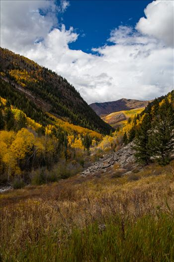 Snowmass Wilderness Area No 3 by Scott Smith Photos