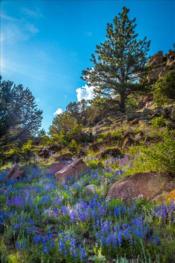 Guffy Cove (Paradise Cove) Colorado 30 by Scott Smith Photos