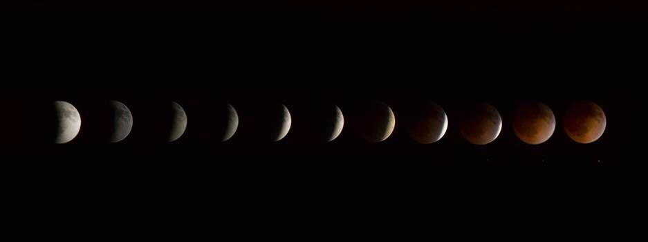 2014 Blood Moon Collage by Scott Smith Photos