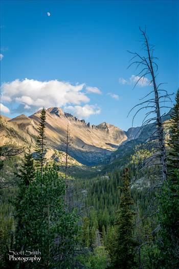 Bear Lake Trail 7 by Scott Smith Photos