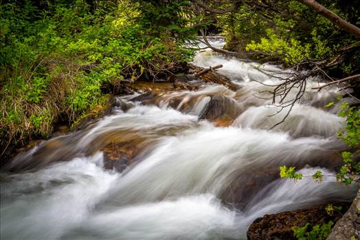 Bear Lake Trail 9 by Scott Smith Photos