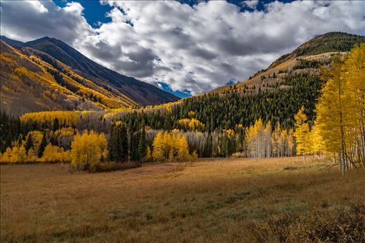 Fall in Aspen Snowmass Wilderness Area No 1 by Scott Smith Photos