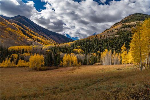 Fall in Aspen Snowmass Wilderness Area No 1 -