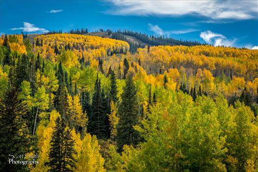 Snowmass Hillside No 1 by Scott Smith Photos