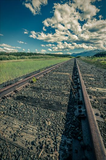 On the Tracks by Scott Smith Photos