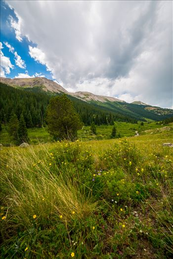 Independence Pass 03 by Scott Smith Photos