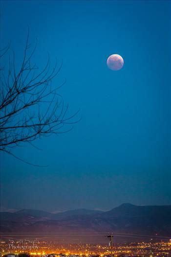 Lunar Eclipse, April 4 2015 8 by Scott Smith Photos