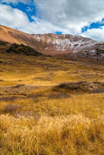 Snow and Grasses at Mount Baldy Wilderness by Scott Smith Photos