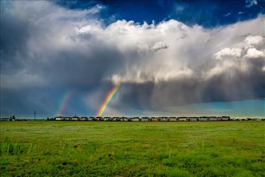 Suburbia Rainbow Connection by Scott Smith Photos