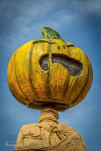 Scary Pumpkin Figure by Scott Smith Photos