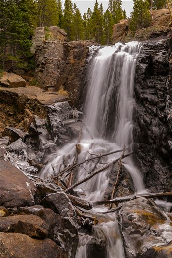 Alberta Falls, Rocky Mountain National Park No 1 by Scott Smith Photos