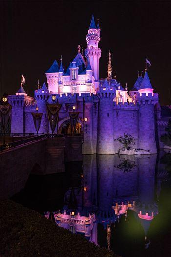 Princess Castle 2 by Scott Smith Photos