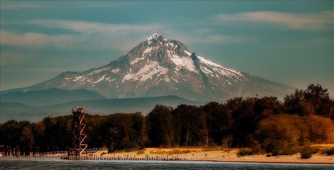 landscape 3 by David Demetrius Maygra Images Inc.