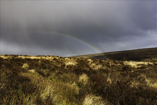 Dartmoor Rainbow 02 by Frank Etchells Photography