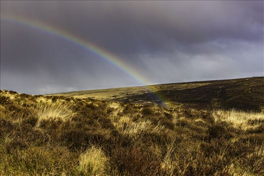 Dartmoor Rainbow 01 by Frank Etchells Photography