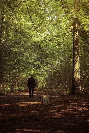 Martin in the woods.jpg by WPC-187