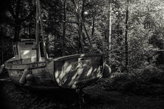 Stranded.jpg by WPC-187