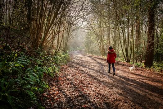 Woman and her Dog-0080.jpg - undefined