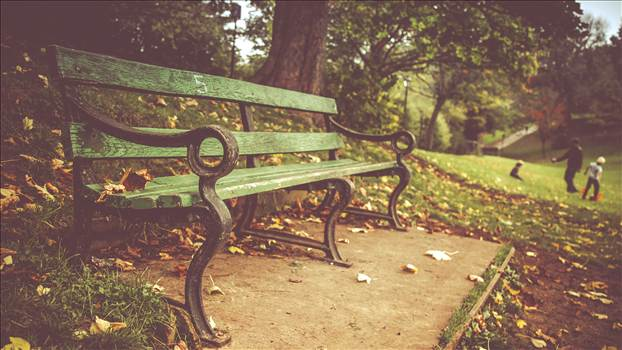 Park Bench.jpg - undefined