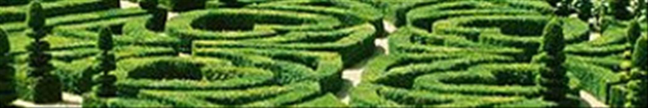 gardens.jpg by shoresofelysium