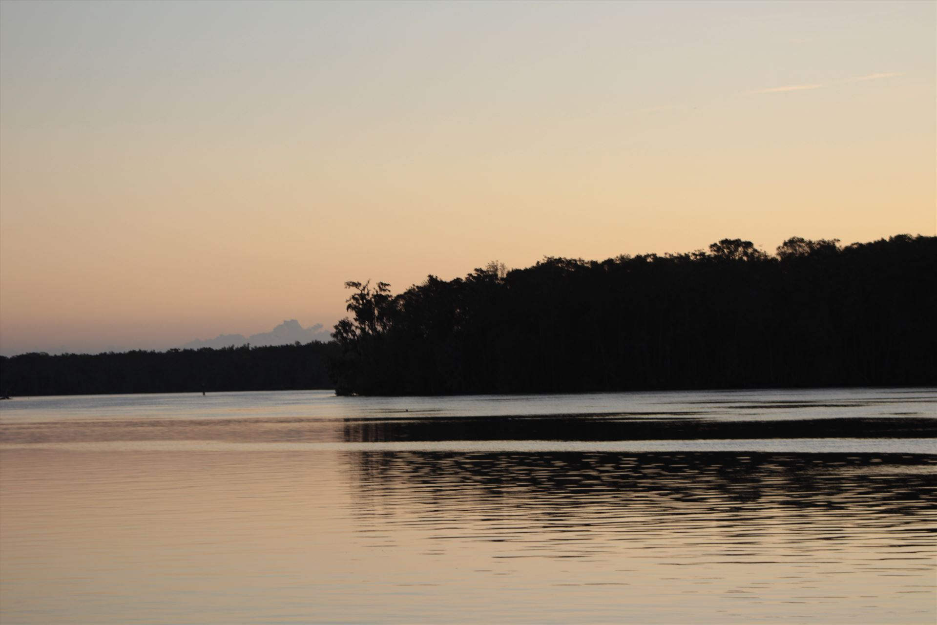 Sunset Ocala 02  by Cat Cornish Photography