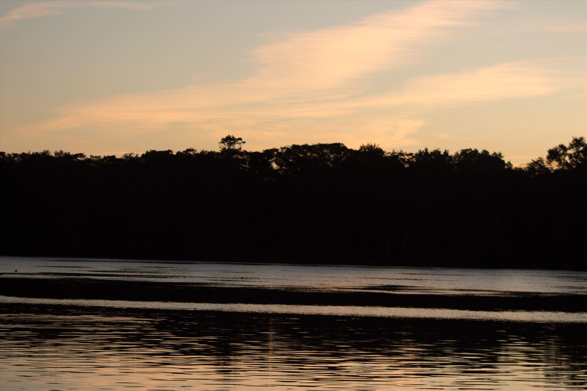 Sunset Ocala 05  by Cat Cornish Photography